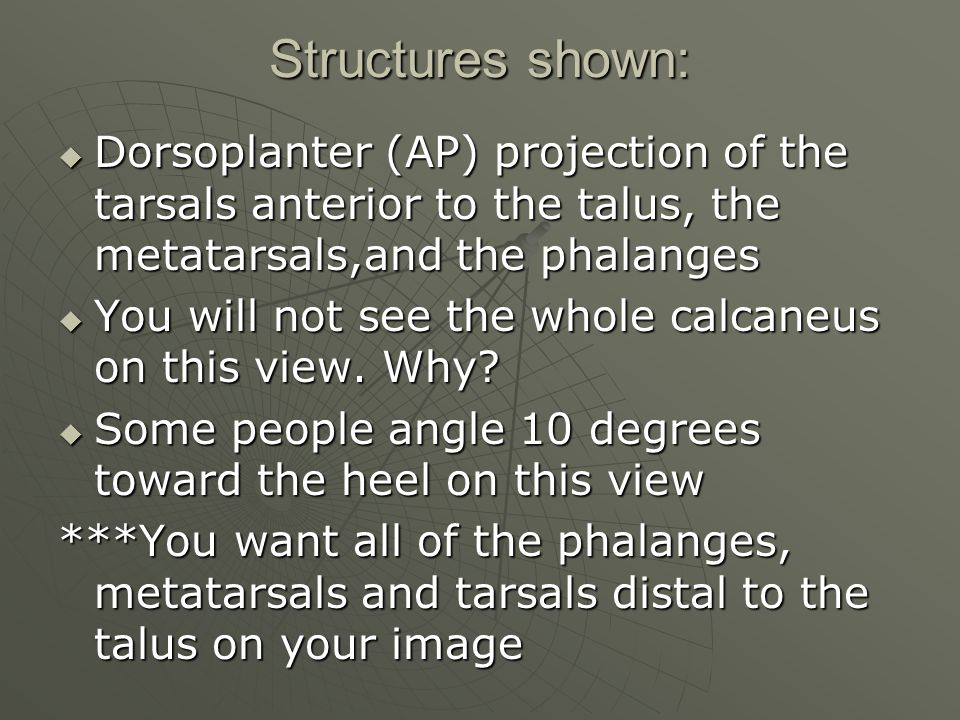 Structures shown:  Dorsoplanter (AP) projection of the tarsals anterior to the talus, the metatarsals,and the phalanges  You will not see the whole calcaneus on this view.