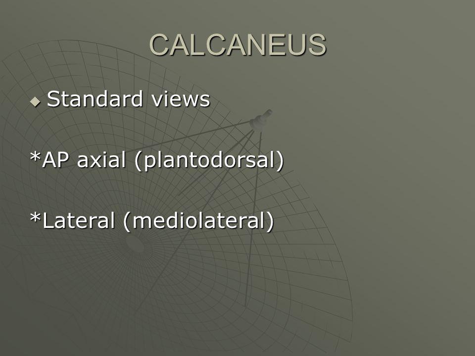 CALCANEUS  Standard views *AP axial (plantodorsal) *Lateral (mediolateral)