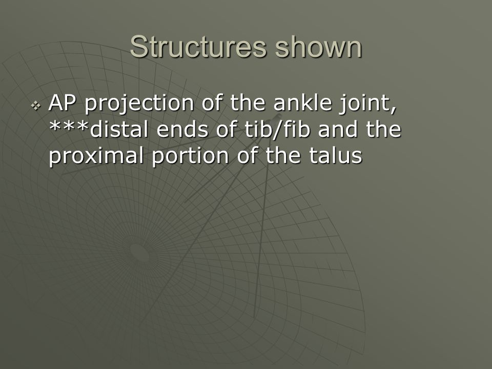 Structures shown  AP projection of the ankle joint, ***distal ends of tib/fib and the proximal portion of the talus
