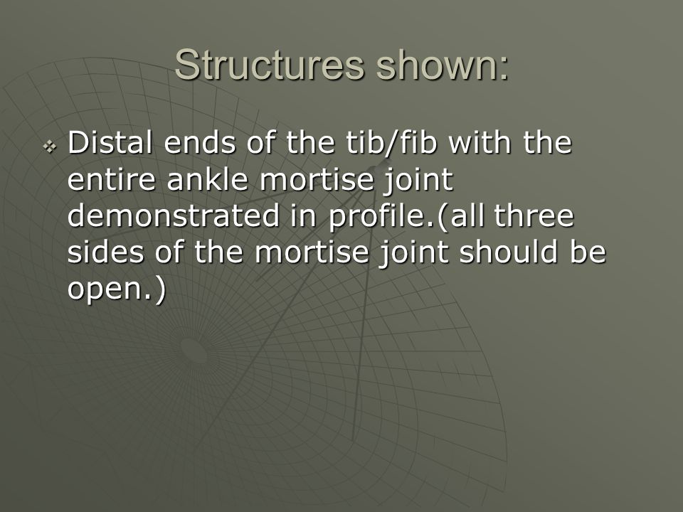 Structures shown:  Distal ends of the tib/fib with the entire ankle mortise joint demonstrated in profile.(all three sides of the mortise joint should be open.)