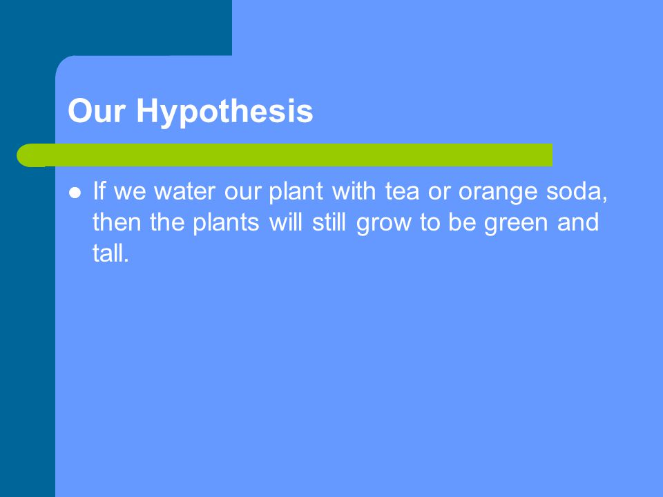 Our Hypothesis If we water our plant with tea or orange soda, then the plants will still grow to be green and tall.