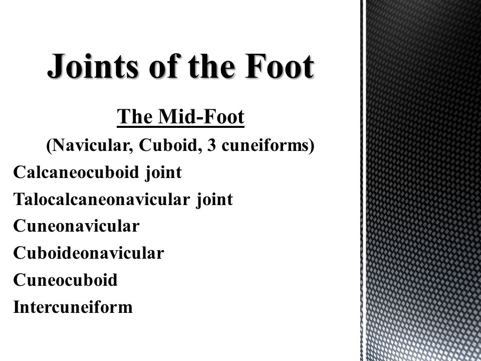 The Mid-Foot (Navicular, Cuboid, 3 cuneiforms) Calcaneocuboid joint Talocalcaneonavicular joint Cuneonavicular Cuboideonavicular Cuneocuboid Intercune