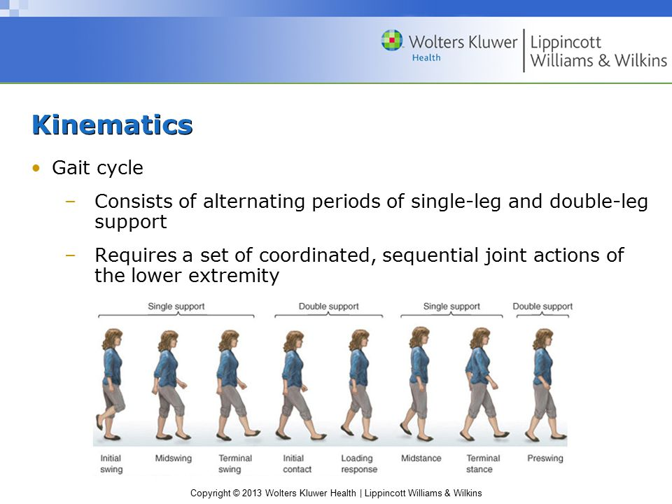 Copyright © 2013 Wolters Kluwer Health | Lippincott Williams & Wilkins Kinematics Gait cycle –Consists of alternating periods of single-leg and double