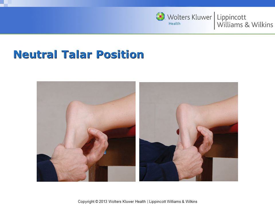 Copyright © 2013 Wolters Kluwer Health | Lippincott Williams & Wilkins Range of Motion (ROM) AROM –Ankle dorsiflexion (20°) –Ankle plantarflexion (30–50°) –Pronation (15–30°) –Supination (45–60°) –Toe extension and flexion –Toe abduction and adduction PROM –Normal end feel Dorsiflexion, plantarflexion, pronation, supination, toe flexion and extension—tissue stretch