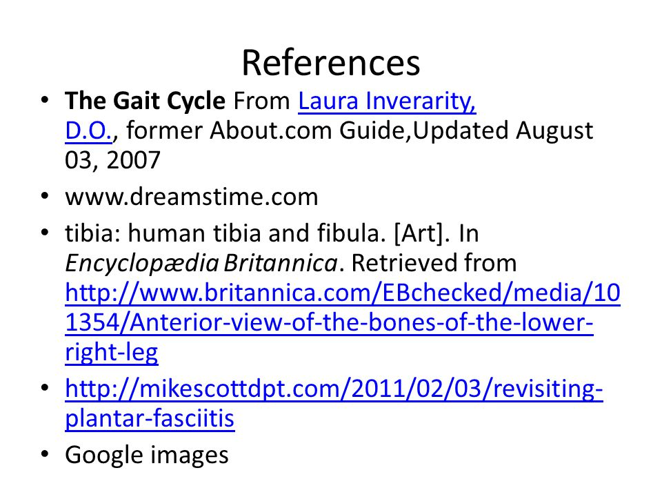 References The Gait Cycle From Laura Inverarity, D.O., former About.com Guide,Updated August 03, 2007Laura Inverarity, D.O. www.dreamstime.com tibia: