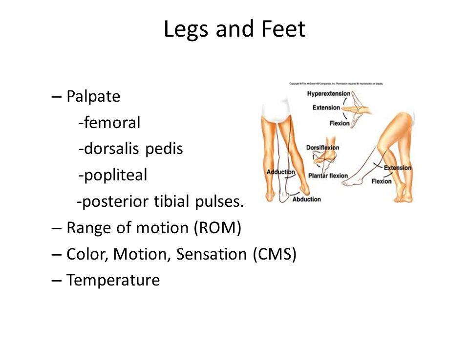 Legs and Feet – Palpate -femoral -dorsalis pedis -popliteal -posterior tibial pulses. – Range of motion (ROM) – Color, Motion, Sensation (CMS) – Tempe