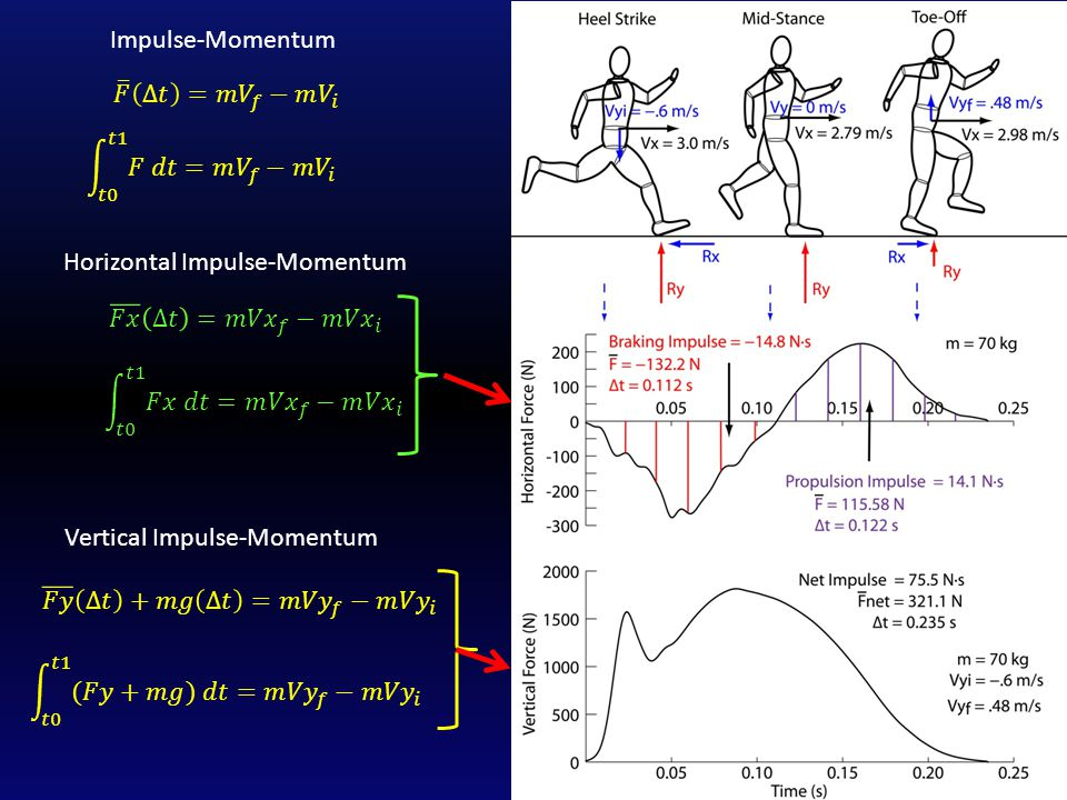 Use the average force to compute braking impulse, propulsion impulse and Vx at midstance (t =.112 s) and toe-off (t =.234 s).