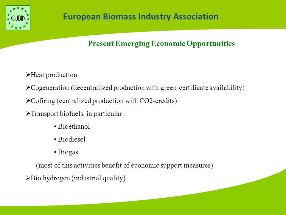 Present Emerging Economic Opportunities  Heat production  Cogeneration (decentralized production with green-certificate availability)  Cofiring (centralized production with CO2-credits)  Transport biofuels, in particular : Bioethanol Biodiesel Biogas (most of this activities benefit of economic support measures)  Bio hydrogen (industrial quality)