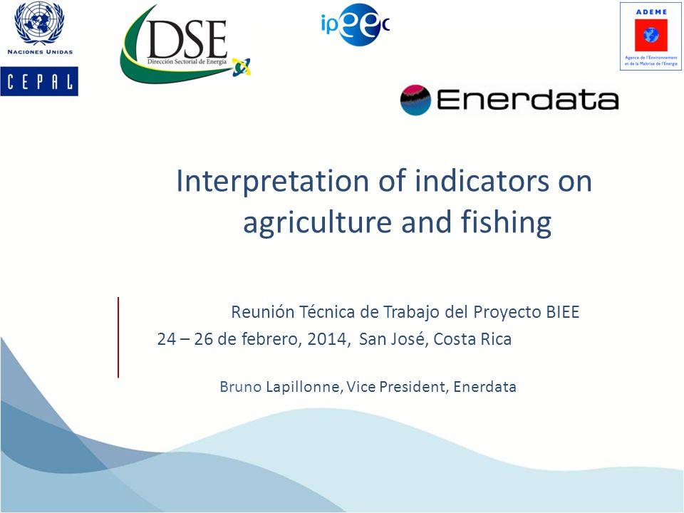 Interpretation of indicators on agriculture and fishing Bruno Lapillonne, Vice President, Enerdata Reunión Técnica de Trabajo del Proyecto BIEE 24 – 26 de febrero, 2014, San José, Costa Rica