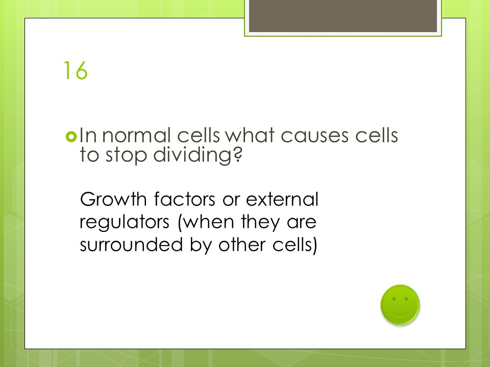 16  In normal cells what causes cells to stop dividing? Growth factors or external regulators (when they are surrounded by other cells)