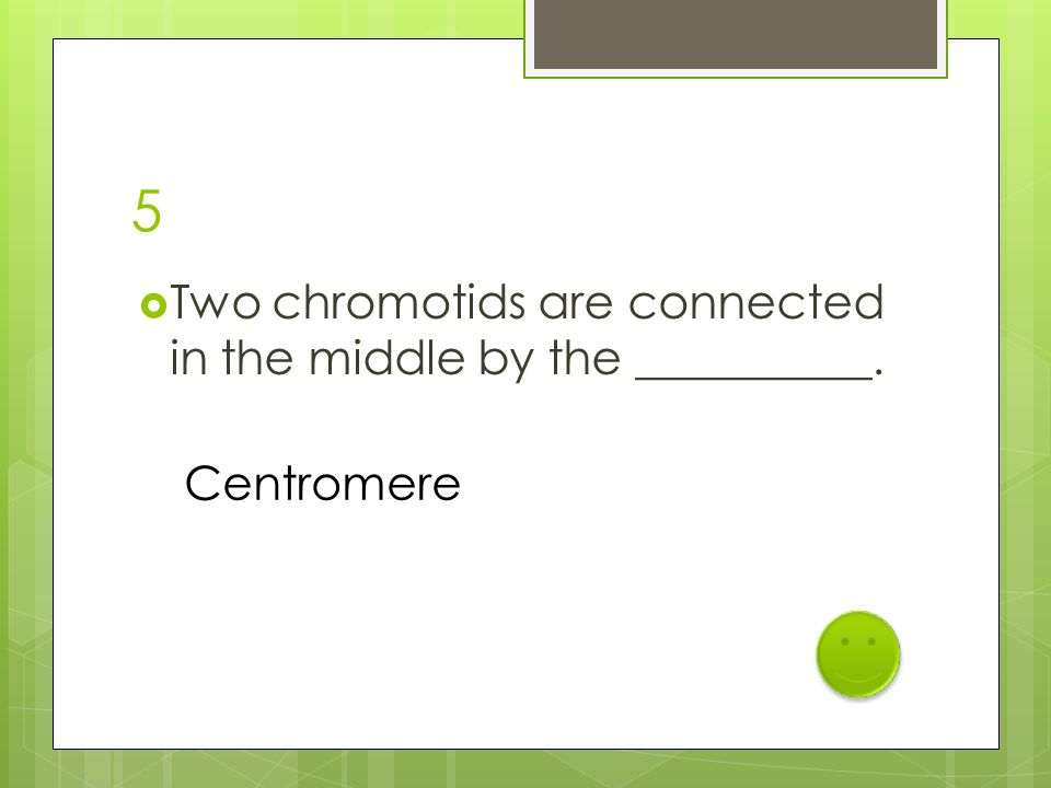 5  Two chromotids are connected in the middle by the __________. Centromere