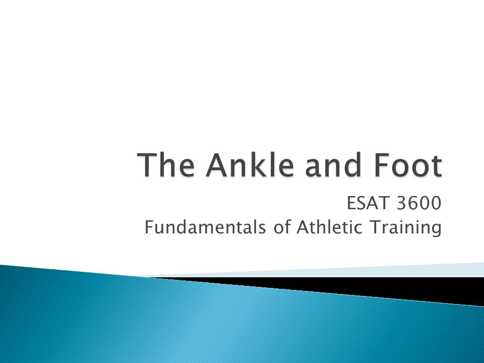  O: posterior surface of head and upper 1/3 of shaft of fibula, soleal line and middle 1/3 of medial border of tibia, tendinous arch between tibia and fibula  I: posterior surface of calcaneus by means of Achilles tendon  A: plantar flexion and inversion of foot at the ankle  RO-IA: active in standing balance mechanism (forward sway)