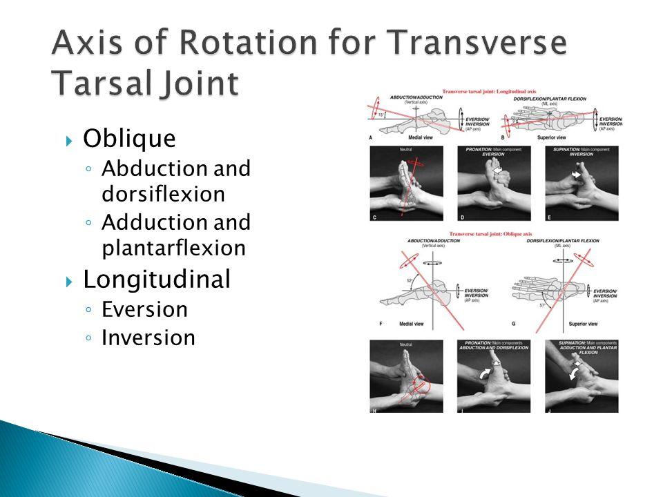  Oblique ◦ Abduction and dorsiflexion ◦ Adduction and plantarflexion  Longitudinal ◦ Eversion ◦ Inversion