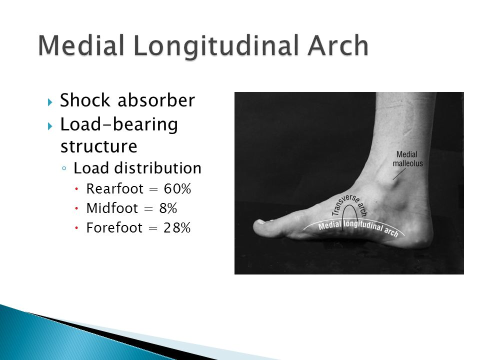  Shock absorber  Load-bearing structure ◦ Load distribution  Rearfoot = 60%  Midfoot = 8%  Forefoot = 28%
