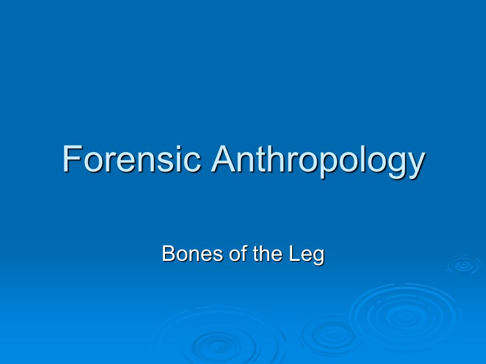 Forensic Anthropology Bones of the Leg