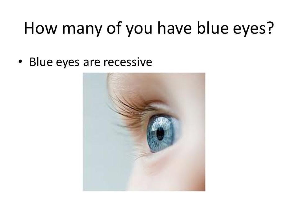 How many of you have blue eyes? Blue eyes are recessive
