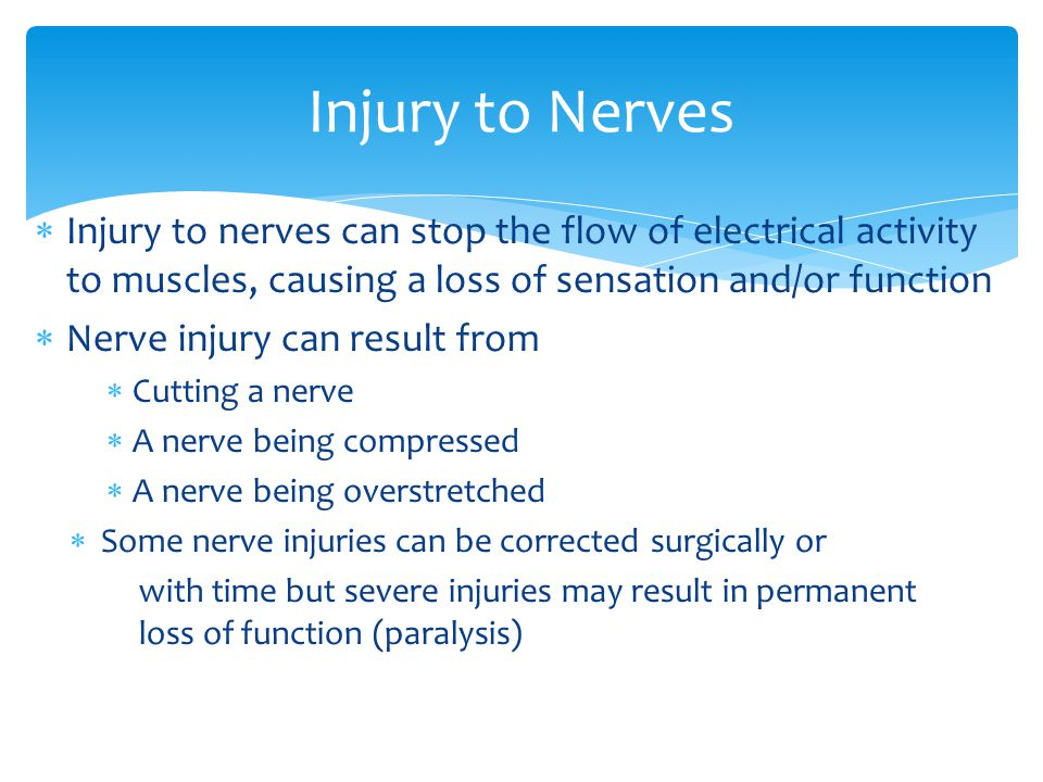 Injury to Nerves  Injury to nerves can stop the flow of electrical activity to muscles, causing a loss of sensation and/or function  Nerve injury can result from  Cutting a nerve  A nerve being compressed  A nerve being overstretched  Some nerve injuries can be corrected surgically or with time but severe injuries may result in permanent loss of function (paralysis)