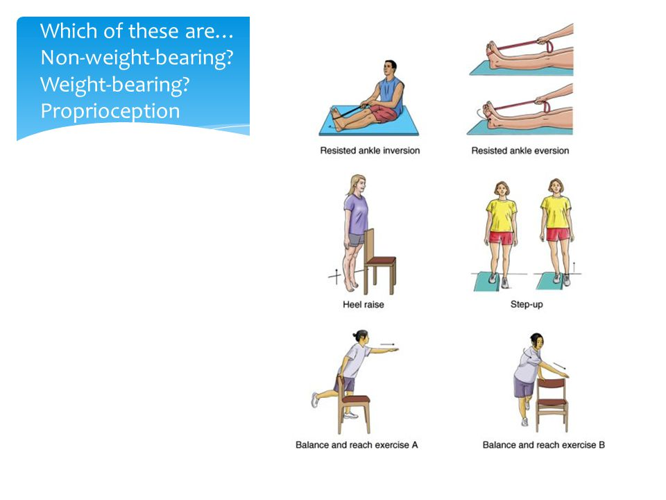 Which of these are… Non-weight-bearing? Weight-bearing? Proprioception