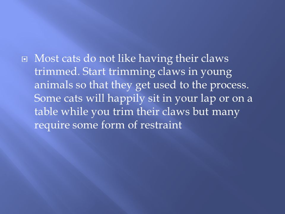  Most cats do not like having their claws trimmed.