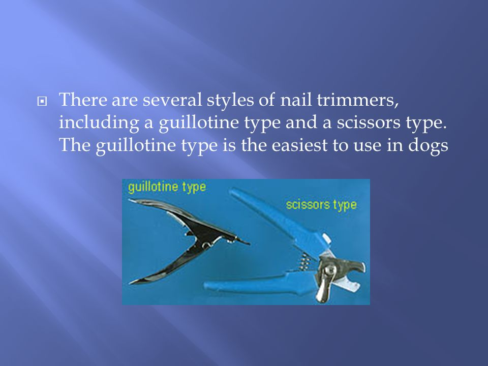  There are several styles of nail trimmers, including a guillotine type and a scissors type.