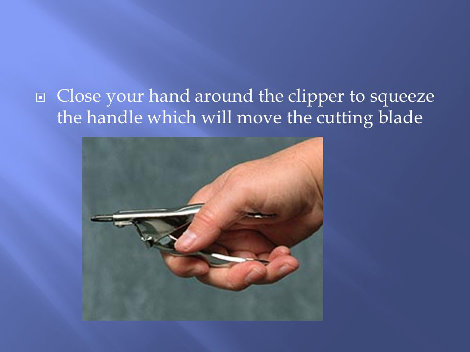  Close your hand around the clipper to squeeze the handle which will move the cutting blade