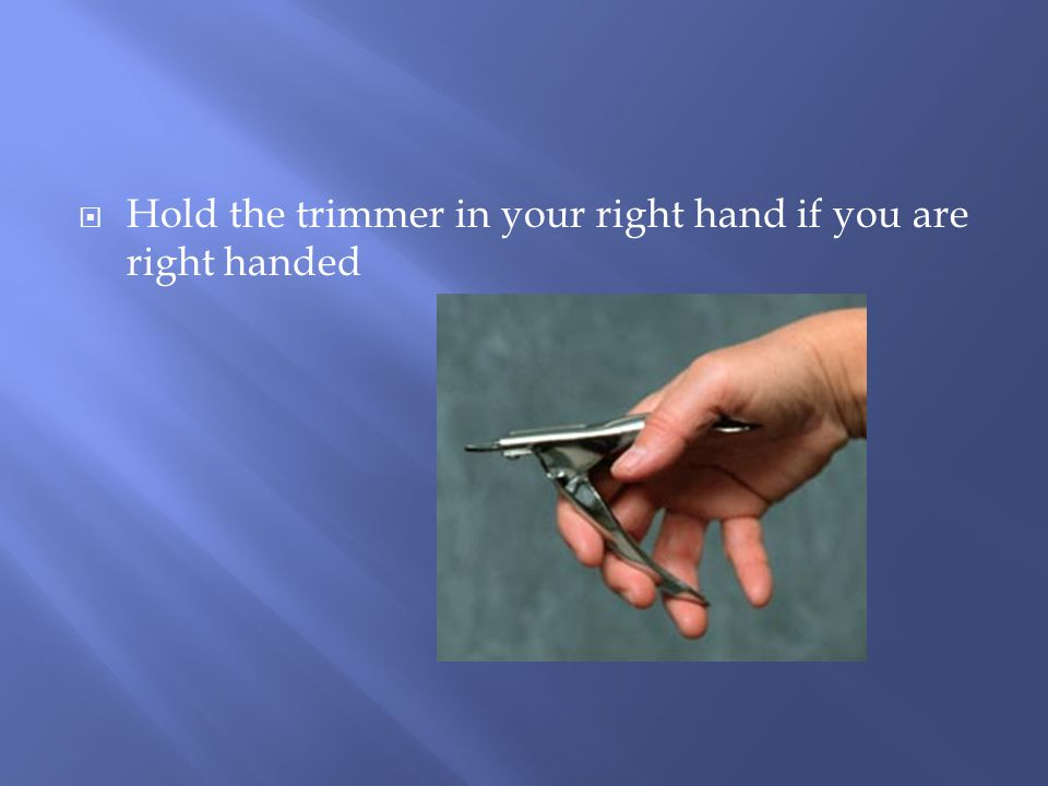  Hold the trimmer in your right hand if you are right handed