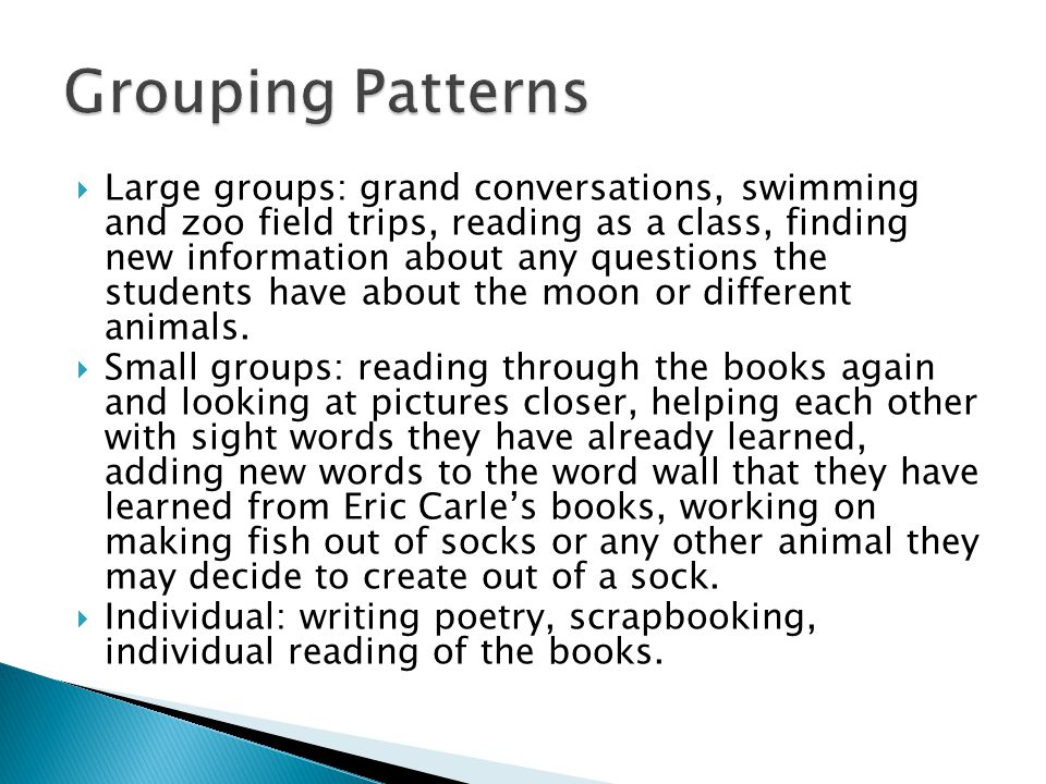  Large groups: grand conversations, swimming and zoo field trips, reading as a class, finding new information about any questions the students have a