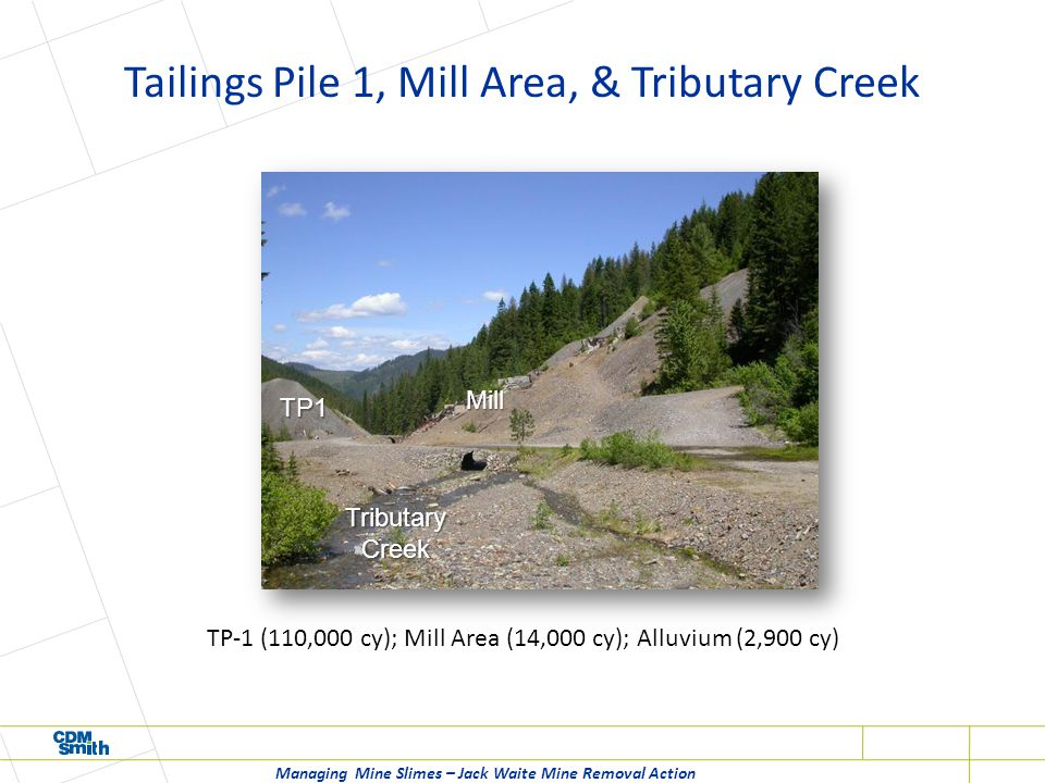 Tailings Pile 1, Mill Area, & Tributary Creek Managing Mine Slimes – Jack Waite Mine Removal Action TP-1 (110,000 cy); Mill Area (14,000 cy); Alluvium (2,900 cy) TP1 Mill Tributary Creek