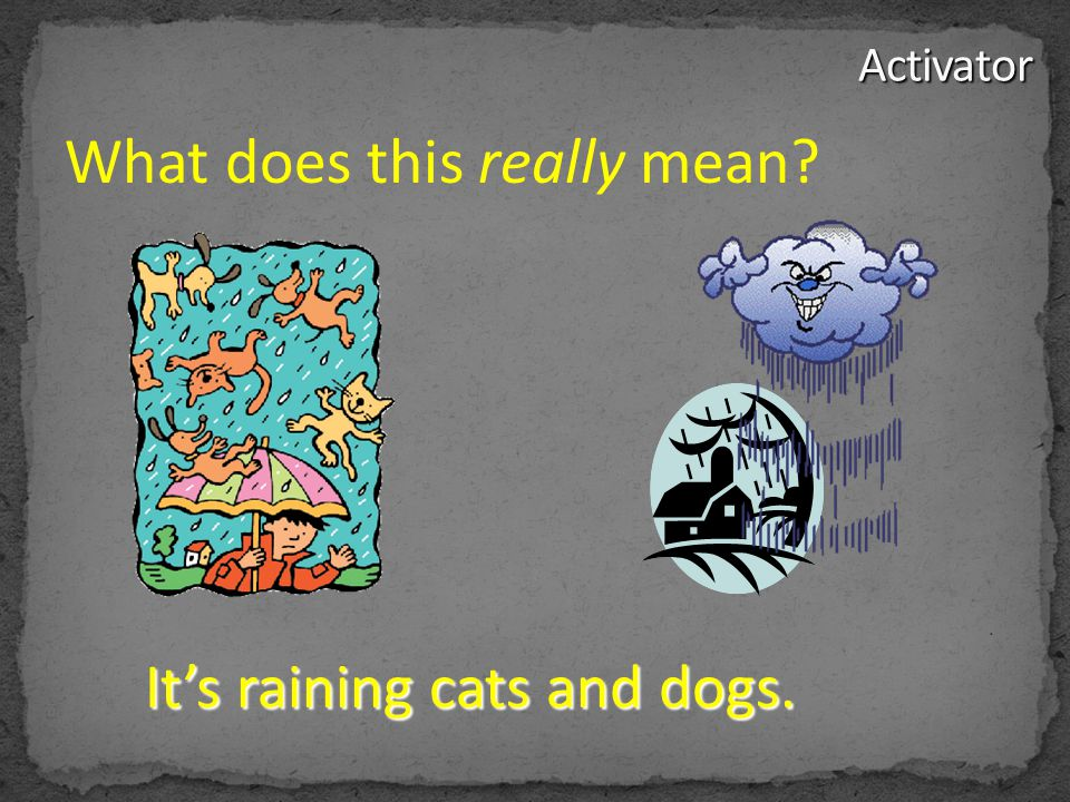 It's raining cats and dogs. What does this really mean?