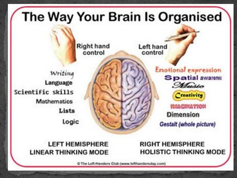  People who rely more heavily on the right half of their brain tend to be more imaginative and intuitive.