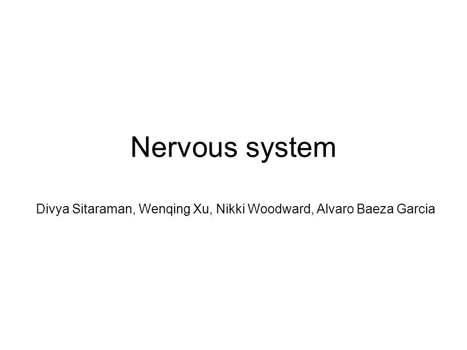Nervous system Divya Sitaraman, Wenqing Xu, Nikki Woodward, Alvaro Baeza Garcia