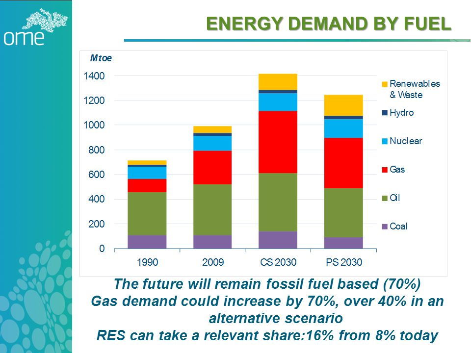 HEAVY RELIANCE ON FOSSIL FUELS WILL ENDURE Source: OME