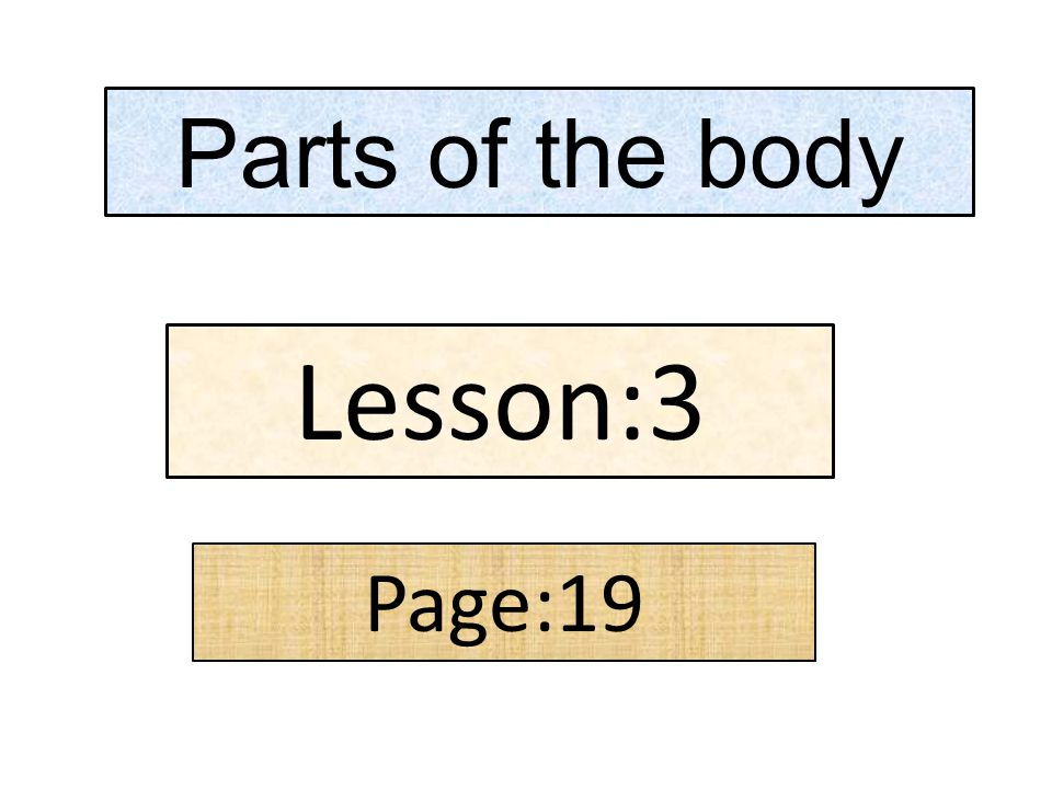 Parts of the body Lesson:3 Page:19