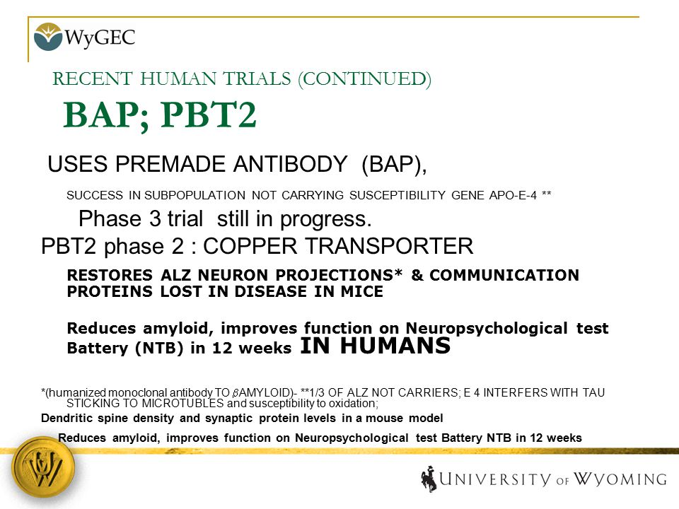 RECENT HUMAN TRIALS (CONTINUED) BAP; PBT2 USES PREMADE ANTIBODY (BAP), SUCCESS IN SUBPOPULATION NOT CARRYING SUSCEPTIBILITY GENE APO-E-4 ** Phase 3 tr