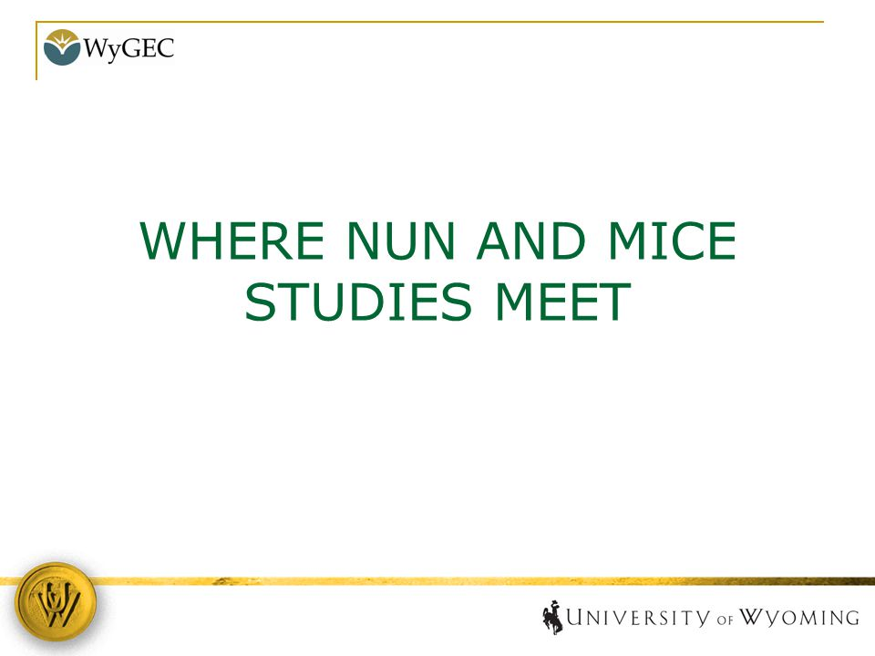 WHERE NUN AND MICE STUDIES MEET