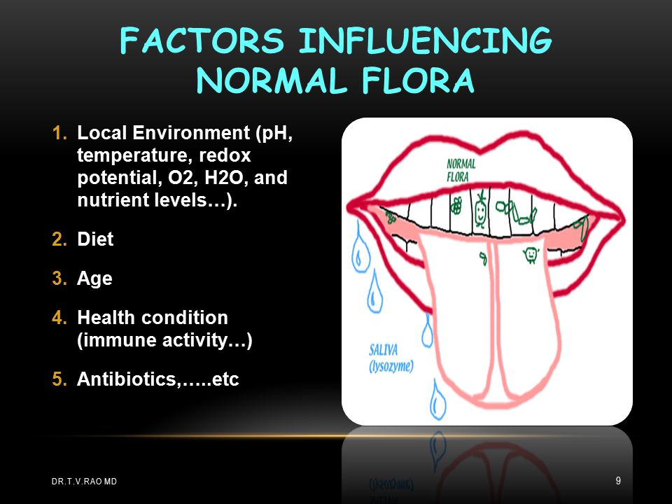 NORMAL FLORA OF THE RESPIRATORY TRACT C) The lower respiratory tract (trachea, bronchi, and pulmonary tissues): Usually sterile.