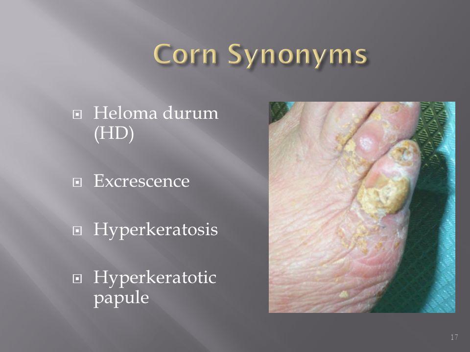  Heloma durum (HD)  Excrescence  Hyperkeratosis  Hyperkeratotic papule 17