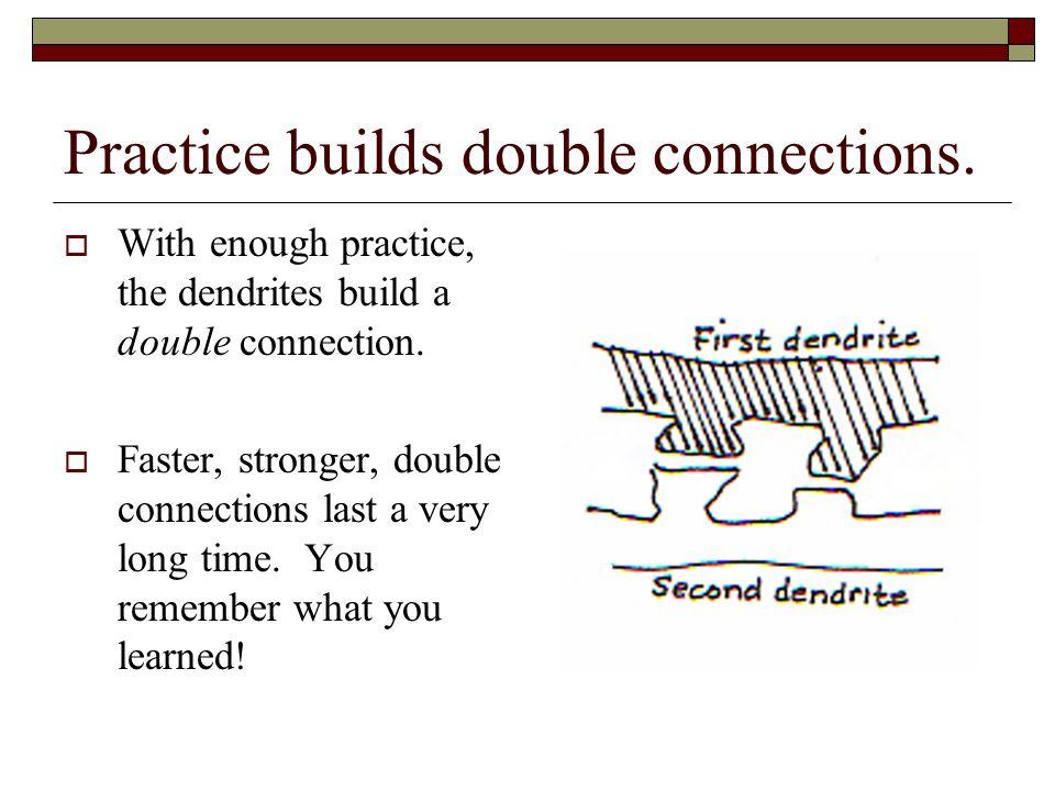 Practice builds double connections.