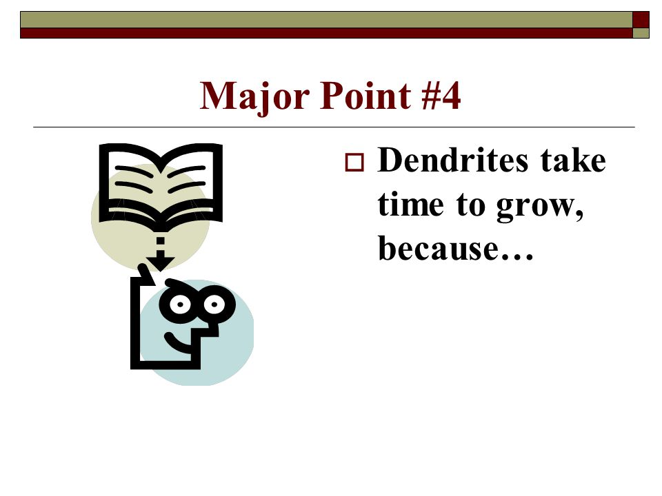 Major Point #4  Dendrites take time to grow, because…