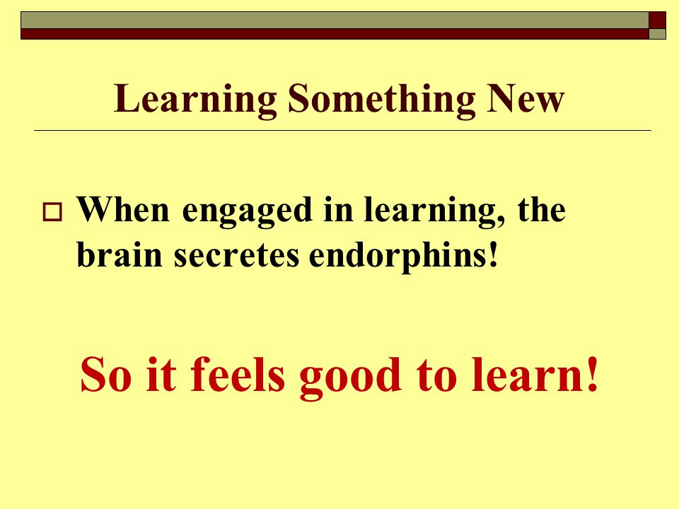 Learning Something New  When engaged in learning, the brain secretes endorphins.