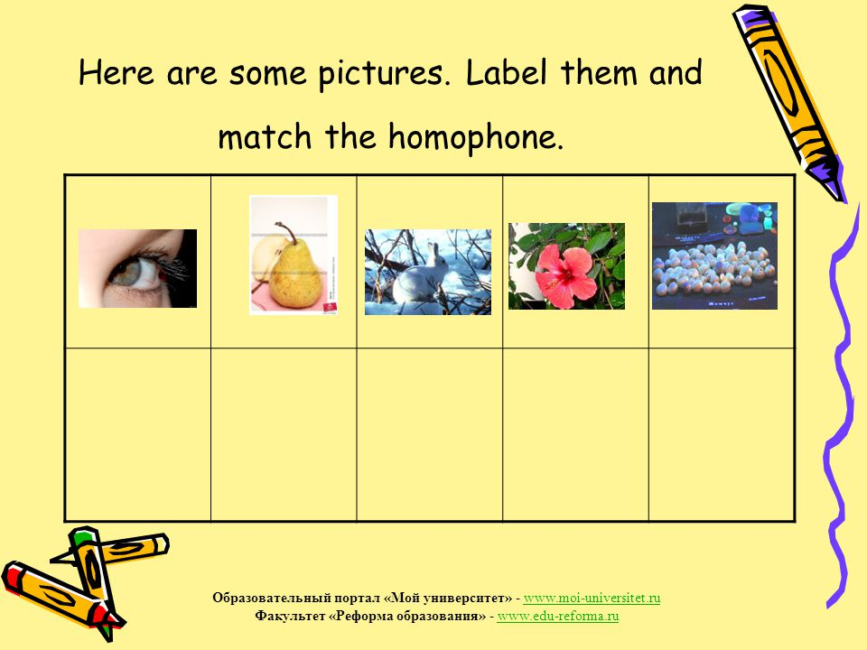 Here are some pictures.Label them and match the homophone.