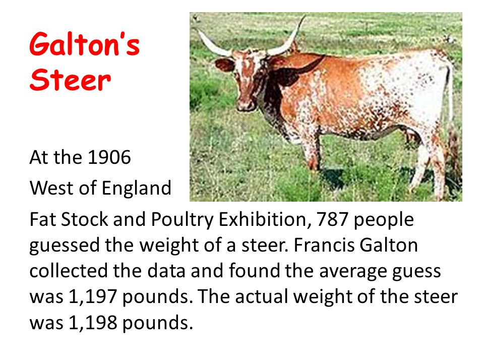 Galton's Steer At the 1906 West of England Fat Stock and Poultry Exhibition, 787 people guessed the weight of a steer. Francis Galton collected the da