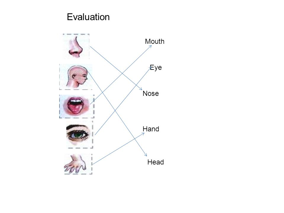 Mouth Eye Nose Hand Head Evaluation