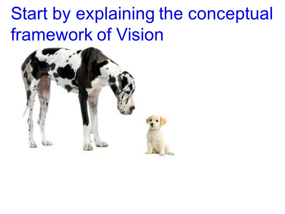 Start by explaining the conceptual framework of Vision