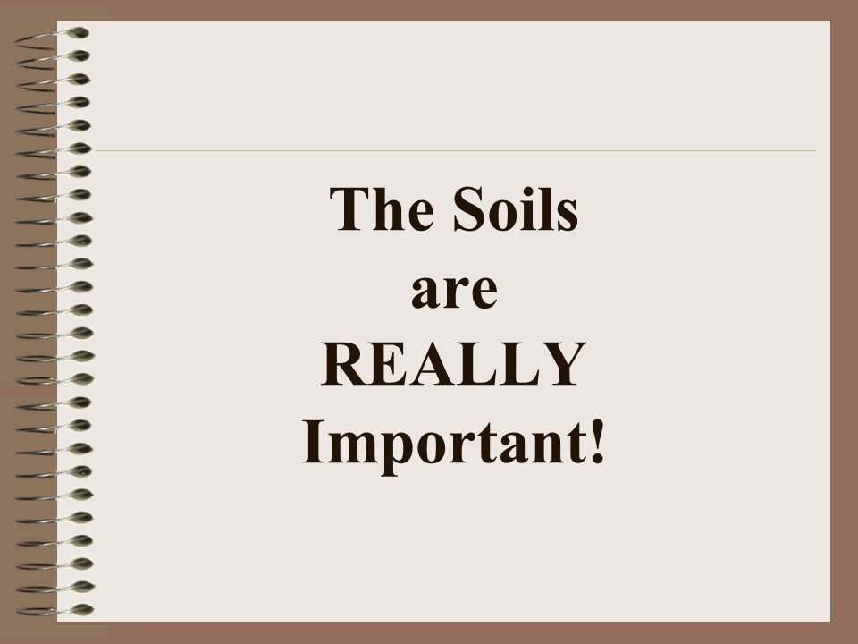 The Soils are REALLY Important!