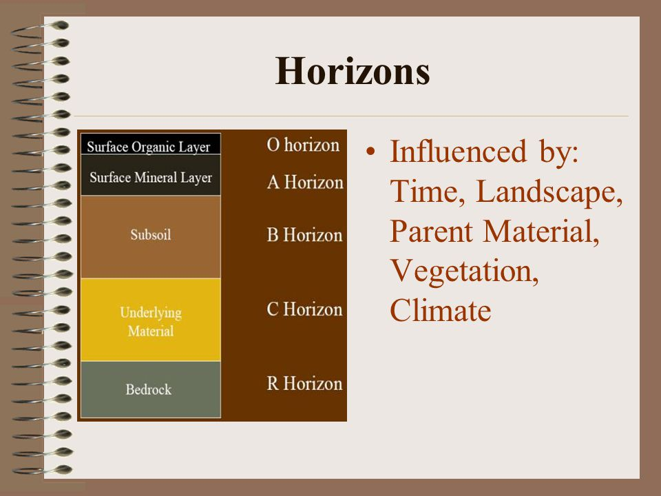 Horizons Influenced by: Time, Landscape, Parent Material, Vegetation, Climate