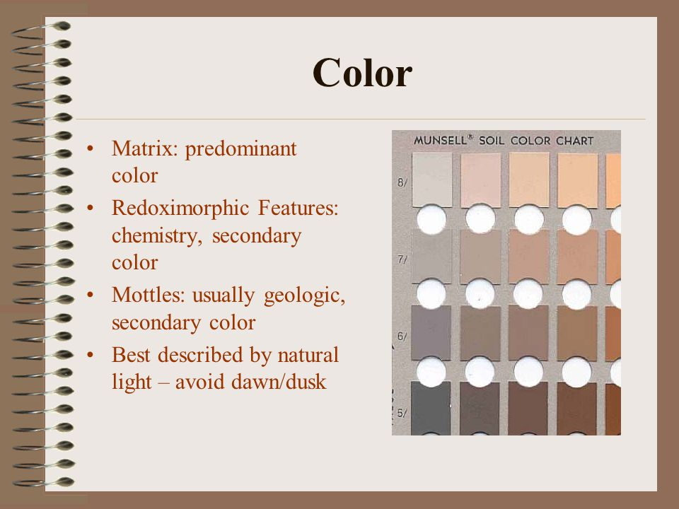 Color Matrix: predominant color Redoximorphic Features: chemistry, secondary color Mottles: usually geologic, secondary color Best described by natural light – avoid dawn/dusk