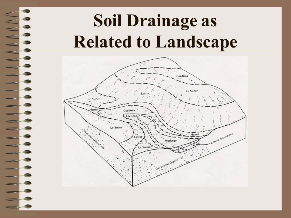 Soil Drainage as Related to Landscape