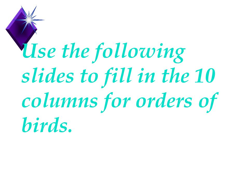 Use the following slides to fill in the 10 columns for orders of birds.