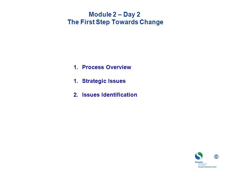 © Module 2 – Day 2 The First Step Towards Change 1.Process Overview 1.Strategic Issues 2.Issues Identification